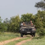 Game Drives (1)