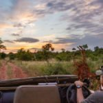 Game Drives (4)